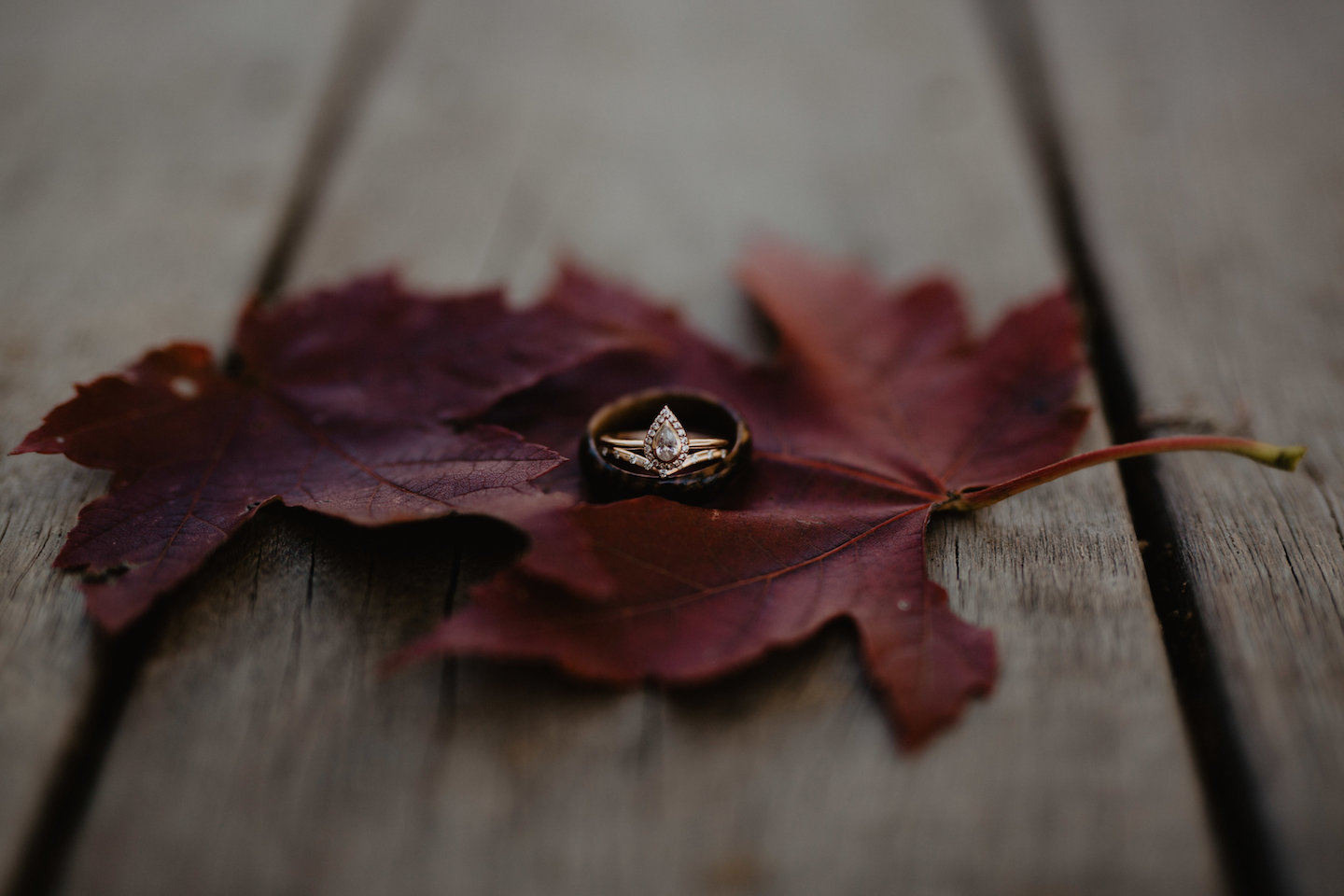 Virginia Wedding Ring Details
